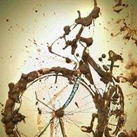 Bays Bikes