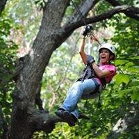 Skyward Adventures Ziplines