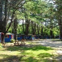 Savoie's Lodging & Camping