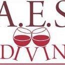 A.E.S. I DIVINI