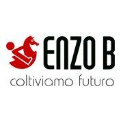 Enzo B Onlus