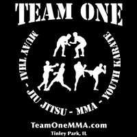 Team One Mixed Martial Arts