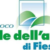 Proloco Valle dell'Arno di Fiesole