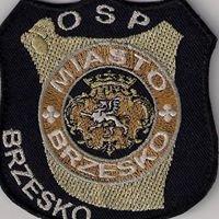 OSP Brzesko