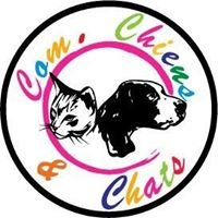 Com. Chiens & Chats à Capbreton