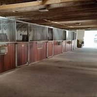 Easter Rattray Equestrian Centre