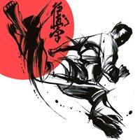Karate-do Kyokushinkai Saikyo Dojo