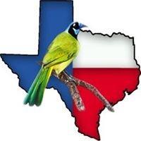 Texas Birding Company