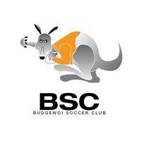 Budgewoi Soccer Club