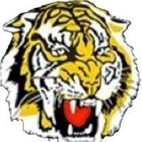 Torquay Junior Football Club