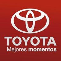 Honda Miramar Tampico Mexico