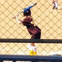 Softball SA West Beach