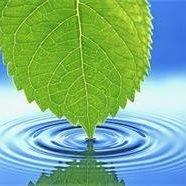 A New Leaf Hypnotherapy