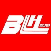 BLH Motor