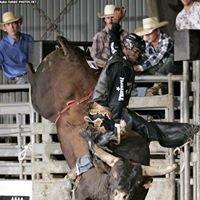 Norris Dalton Bucking Bulls