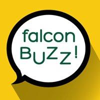 Falcon Buzz