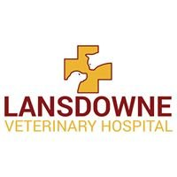 Lansdowne Veterinary Hospital