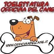 Toelettatura Officina del cane