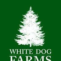 White Dog Christmas Tree Farms