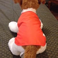 Doggie Underwraps