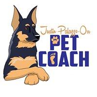Justin Palazzo-Orr: Pet Coach