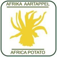 Africa Potato