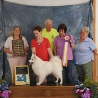 Finger Lakes American Eskimo Dog Assoc. - Show pictures