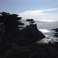 17 mile drive, Carmel California