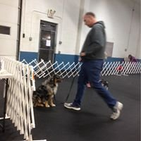Academy Of Dog Training