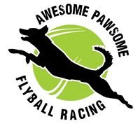 Awesome Pawsome Flyball Racing