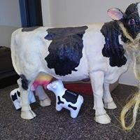Barrington Dairy