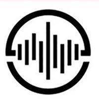 The Car Stereo Company