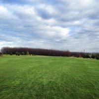 Golf Club Molitorov