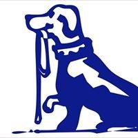 Home & Away Pet Care