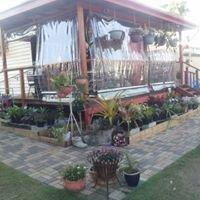 Braisen Hussy Garden Cafe
