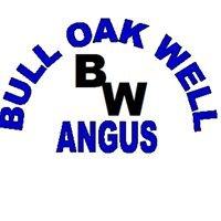 Bull Oak Well Angus