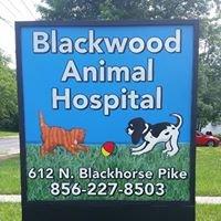 Blackwood Animal Hospital