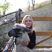 Retztal Lamas