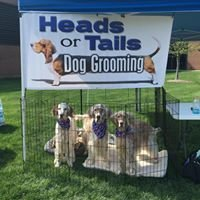 Heads Or Tails Dog Grooming in Oswego