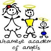 Altamese's Academy of Angels
