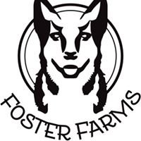 Foster Farms Mini Americans & Australian Cattle Dogs