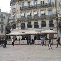 McDonald's Montpellier Comédie