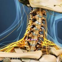 Performance Chiropractic, Spine & Sports Injury