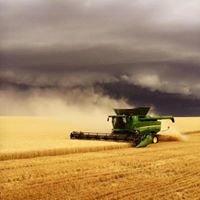 Wright's Trucking & Harvesting