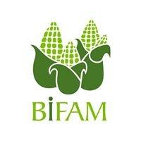 BIFAM Aguascalientes, IBP