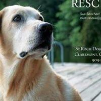 St Roch Dog Rescue