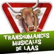 Festival des Transhumances Musicales de Laàs