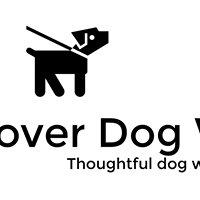 Reactive Rover Dog Walking