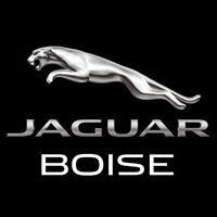 Jaguar of Boise