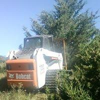 John's  Cedar Tree Removal